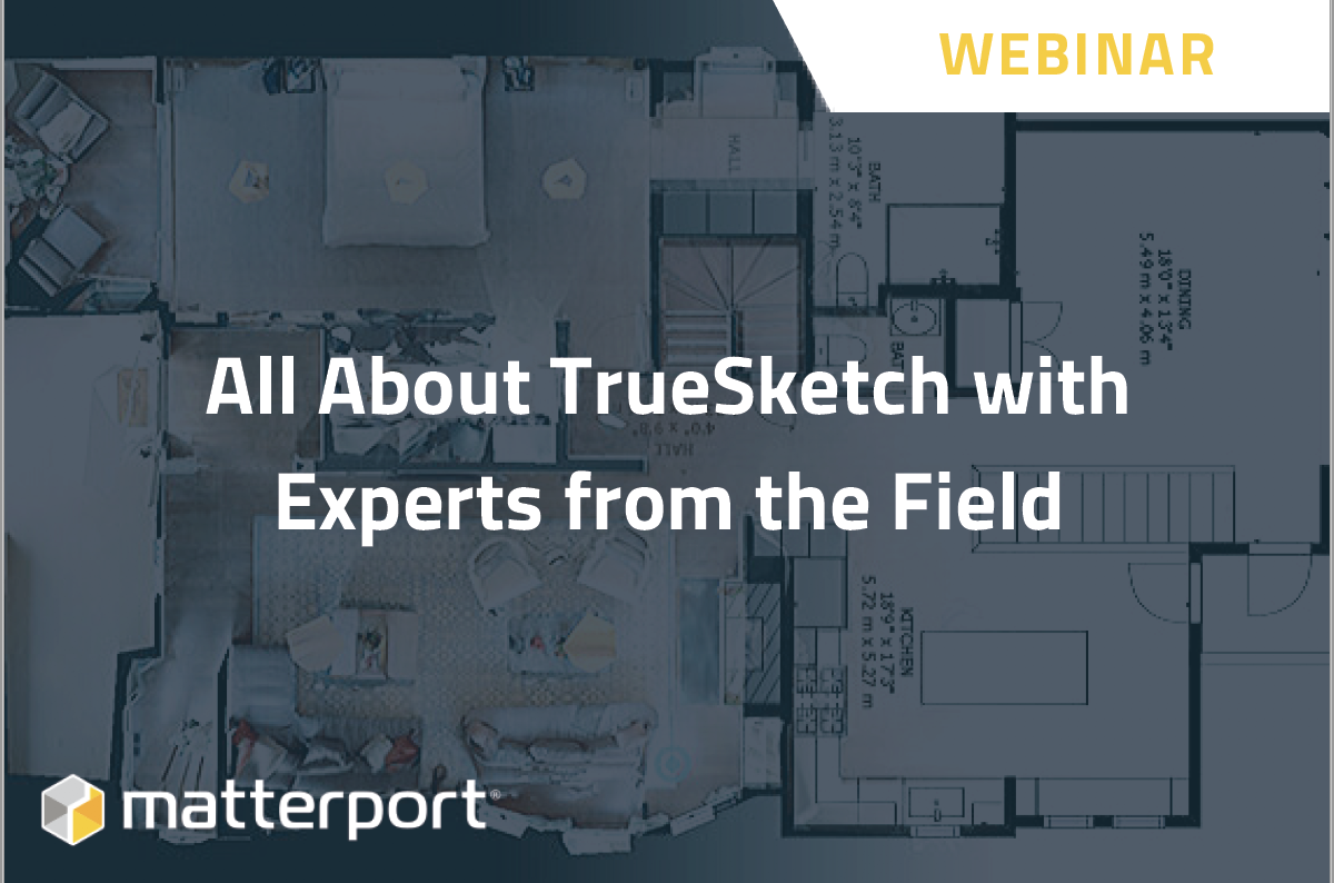 All About TrueSketch With Experts From the Field